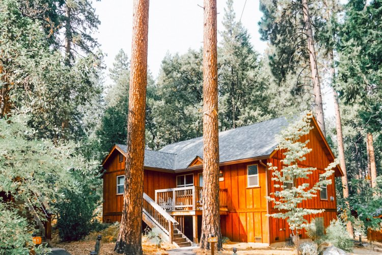 Our Stay at Evergreen Lodge- Yosemite National Park