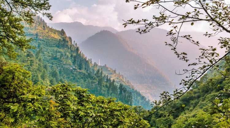 A Comprehensive Guide for Tirthan Valley Treks in 2021