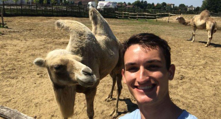 A Trip to the Djurdjevac Zoo (with camels!!): Hrvatska Sahara